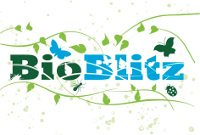 BioBlitz!